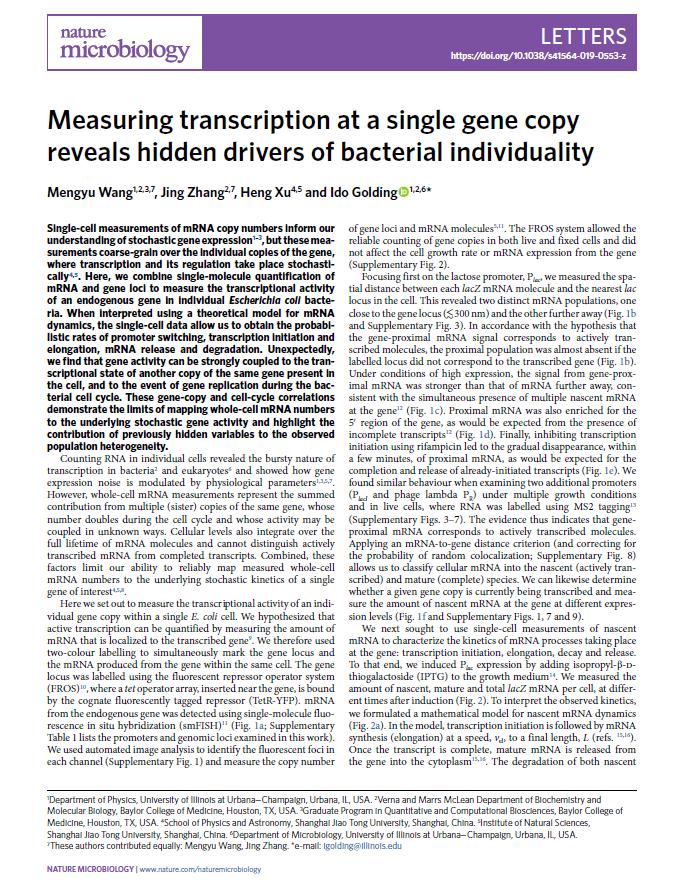 Wang & Zhang et al., Nat. Microbiol. 2019 [PDF]